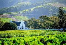 Winelands and West Coast